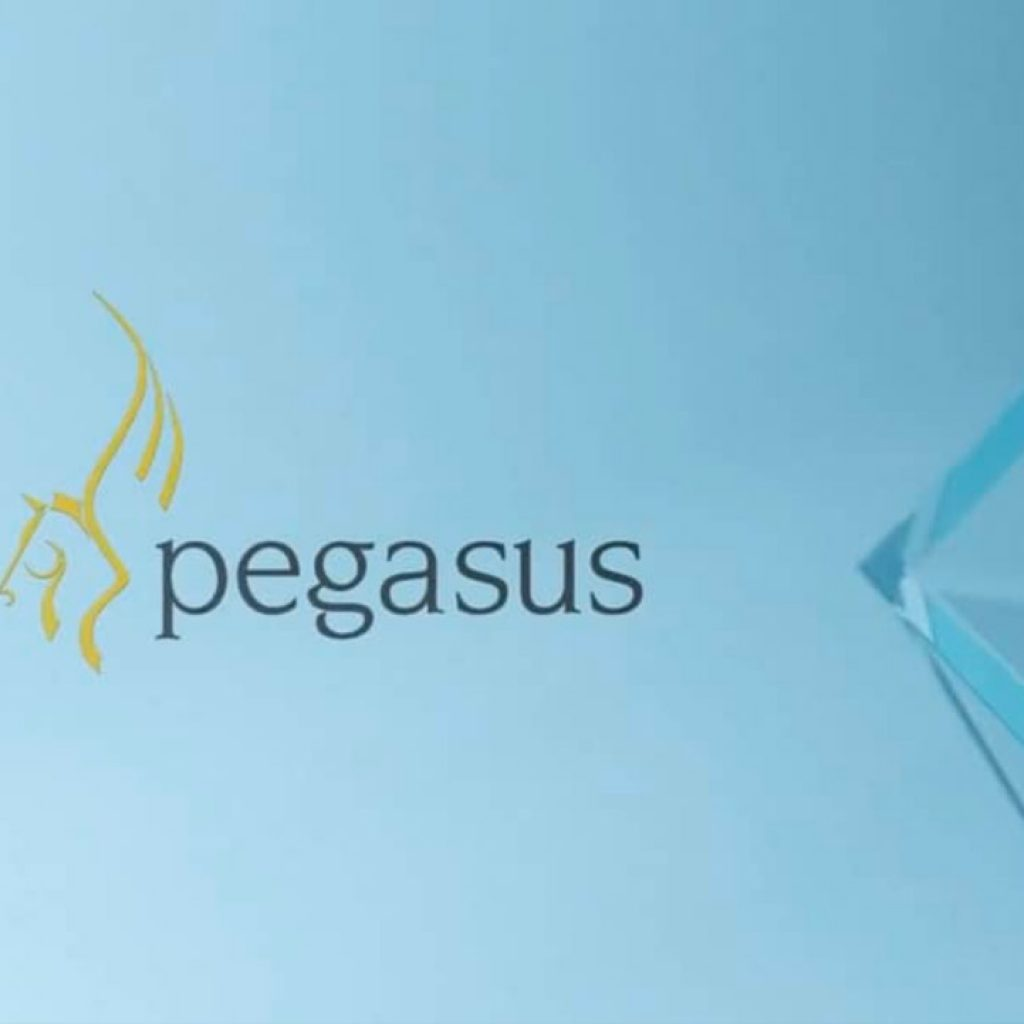 pegasus_vat